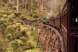 5 great reasons to visit gembrook - ride the puffing billy steam train