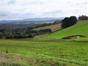 gembrook village fields