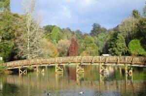 Emerald_Lake_Park_bridge