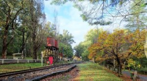Puffing_Billy_Station_Emerald_Park
