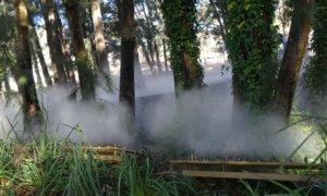 fog sculpture