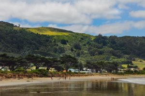 Apollo Bay_where to stay on the great ocean road