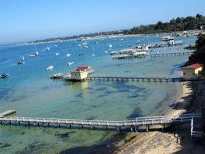 millionaire's walk from portsea melbourne to melbourne, mount dandenong and the bellarine peninsula