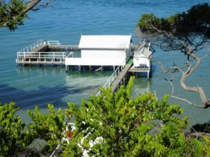 millionaire's walk private jetty with pool