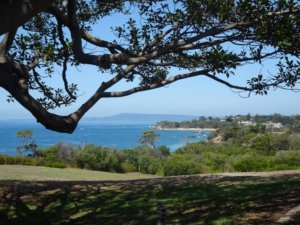 view to portsea from quarantine station