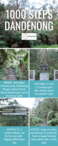 1000 steps dandenong facts