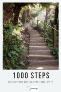 1000 steps pinterest image