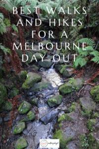 melbourne walks sherbrooke forest walk