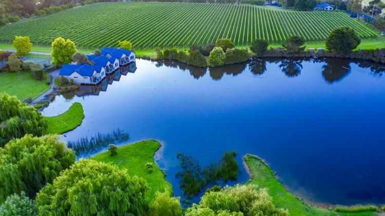 crittenden_wineries